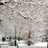 El Boulevar nevado