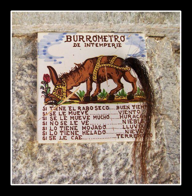 El Burrometro