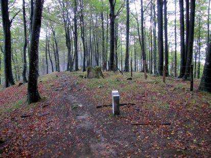 Indicador y dolmen de ,Bernoa,