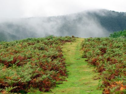 Cumbre de ,Garagartza, (674 m)
