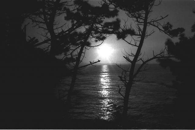 puesta de sol-1966