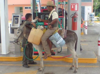Burro gas