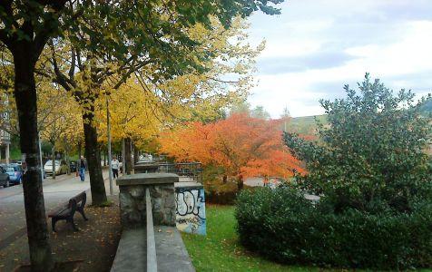 colores de otoño en Hernani
