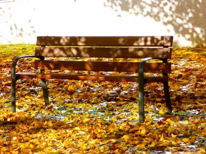 banco entre hojas