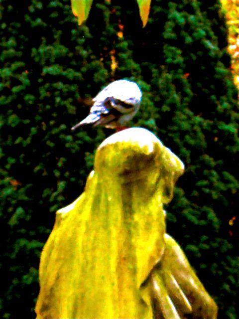 estatua de la Pza. Guipúzcoa