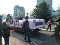Desfile carnavalero en ARNHEM,holanda
