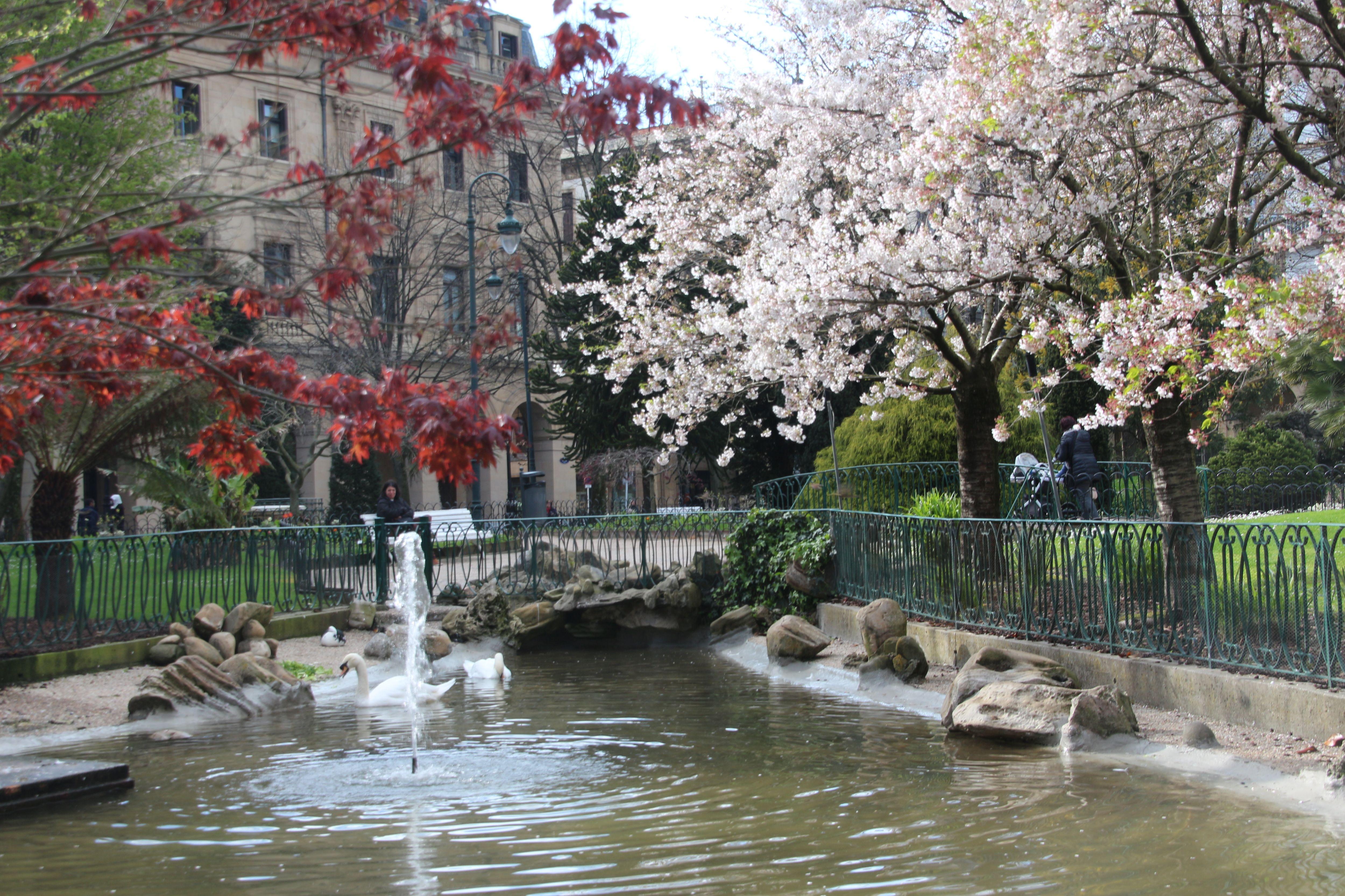 Plaza gipuzkoa fotos de rincones de donostia - Clima en donostia san sebastian ...