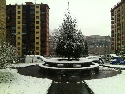 un bello lugar en el parque