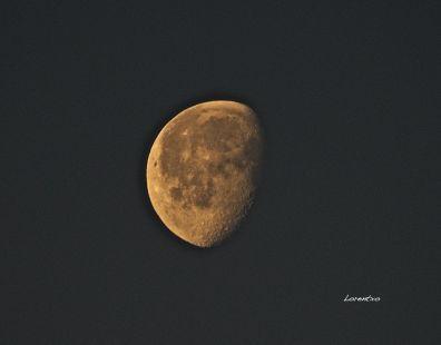Luna Menguante de hoy desde Zarautz