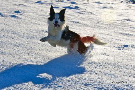 Mi amigo jugando en la nieve