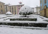 Elgeta  nevada2015