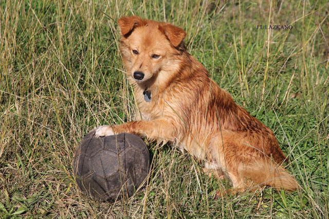 Deba.Eko Futbolista