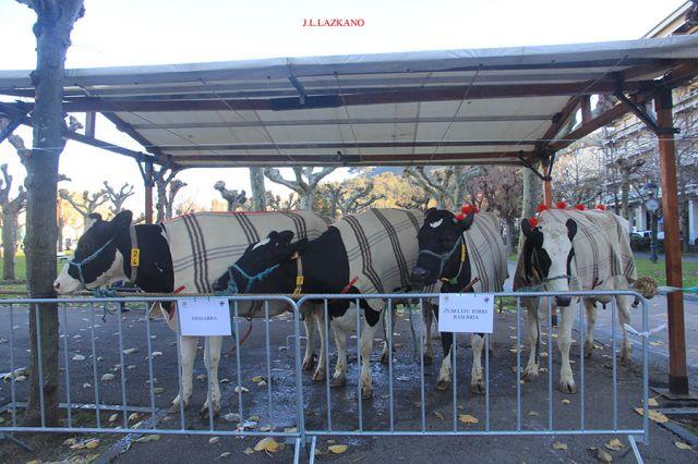 Urte Berriko Feria.Frisiarra.Deba.2017-01-07