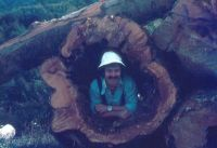 Orhiko bidea.J.L.Lazkano.1980
